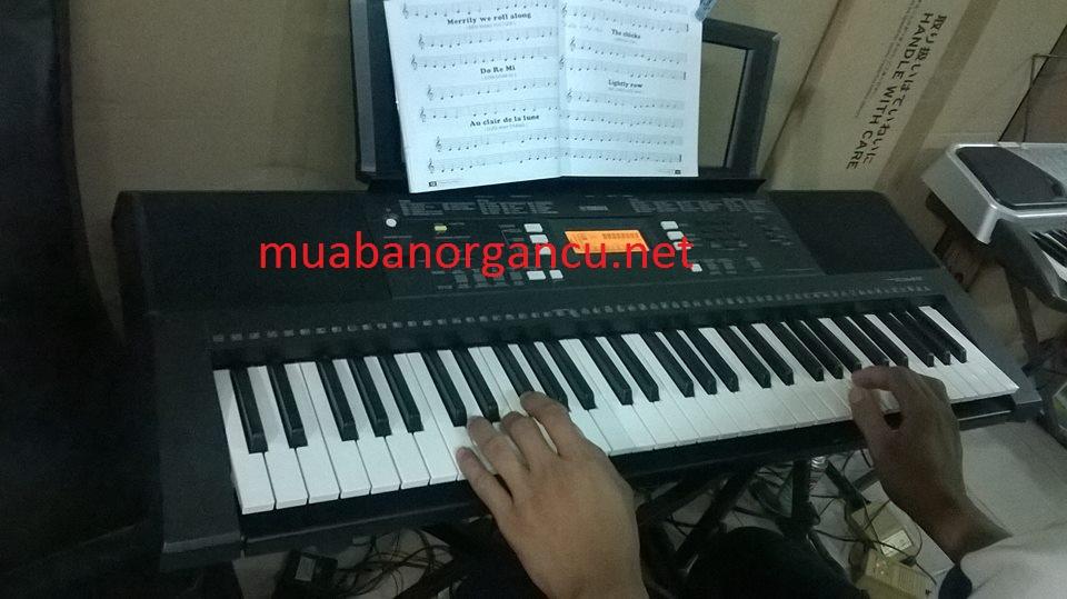 Bán đàn organ tại đà nẵng